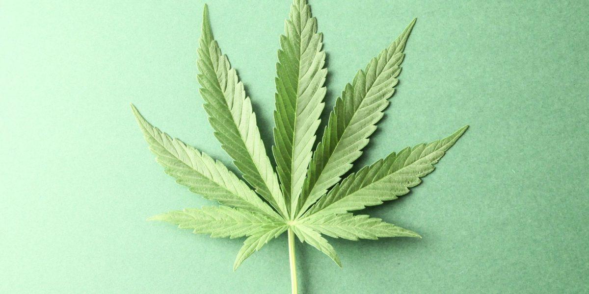 Cannabis DUI Colorado